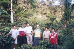 Petits producteurs de café