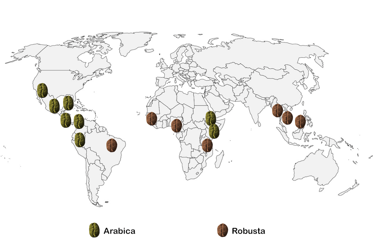 carte-arabica-robusta